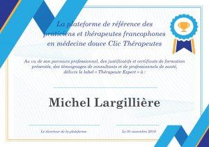 Michel Largillière thérapeute expert